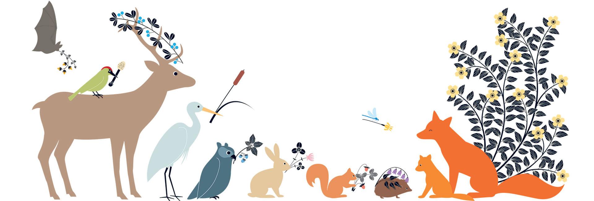 Animales visitando con regalos al nuevo zorro bebé. Ilustración del libro El Secreto, de Émilie Vast.