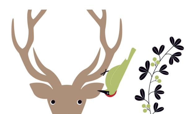 Pájaro verde diciéndole un secreto a un venado. Ilustración del libro El Secreto, de Émilie Vast. Editorial Leetra.