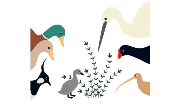 Ilustración del libro Cuac - animales viendo al patito fo