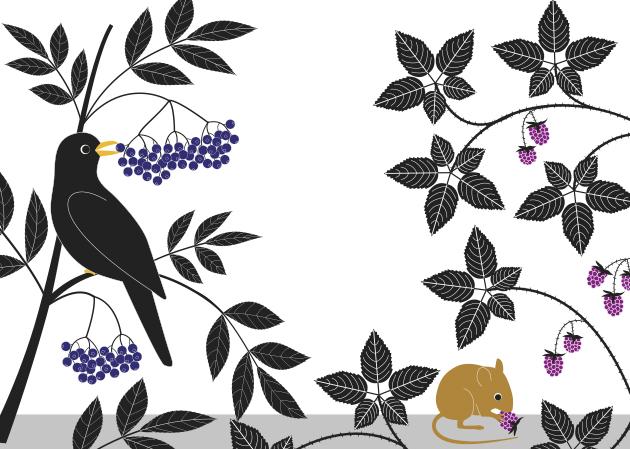 Libro: Plantas Vagabundas, de Émilie Vast